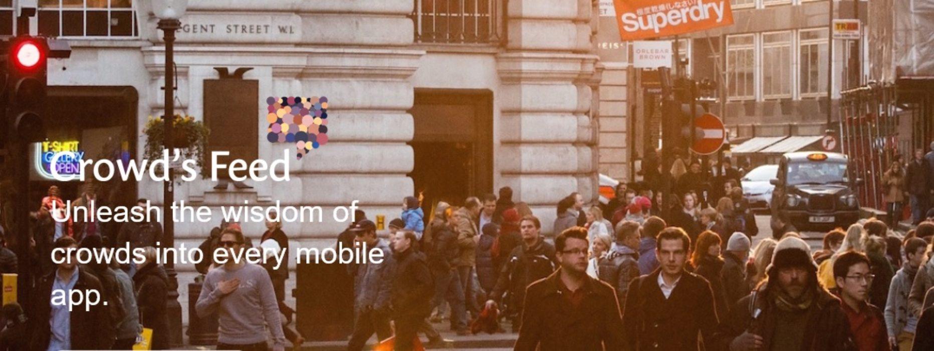 Crowd's Feed – A New Social Media Platform