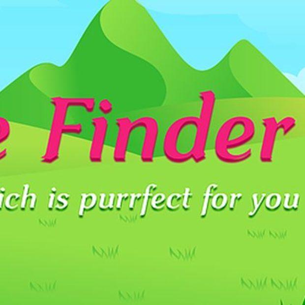 Feline-finder.jpg